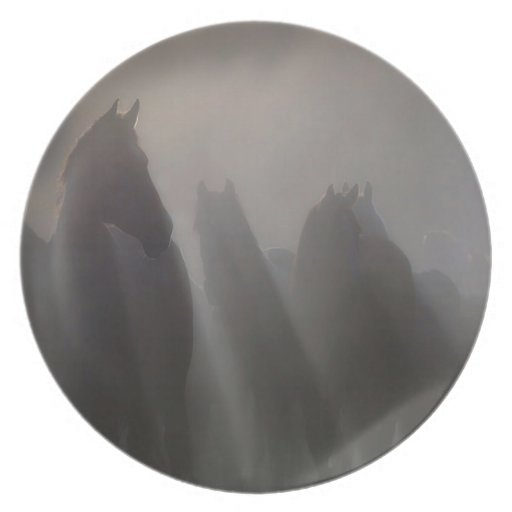 Abstract Animal Ghost Horses Plates