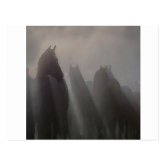 Abstract Animal Ghost Horses Postcard