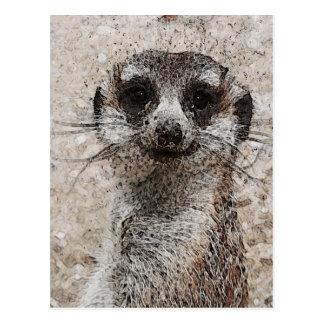 abstract Animal - Meerkat Postcard