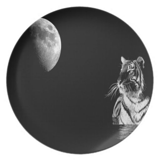 Abstract Animal Night Tiger Party Plates