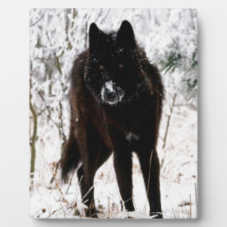 Abstract Animal Winter Wolf Hound Plaques