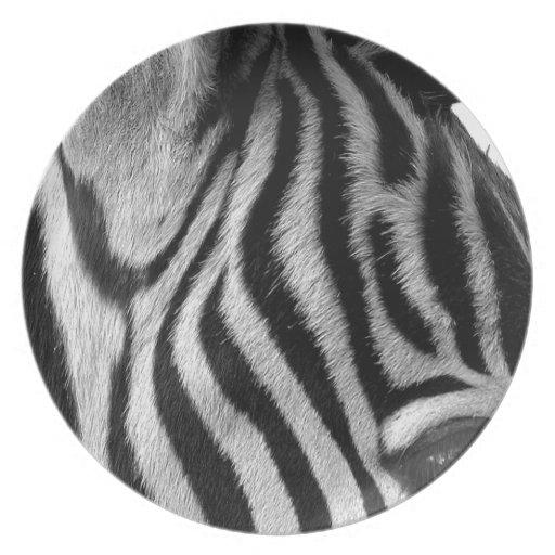 Abstract Animal Zebra Eye Party Plates