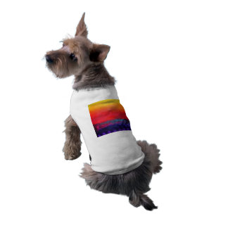 Abstract Art Colorful Modern Painting Pet Clothing