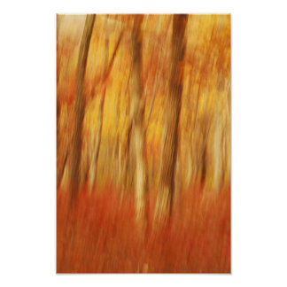 abstract autumn trees print