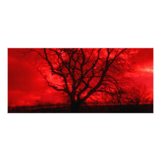 Abstract Bald Tree Rack Card