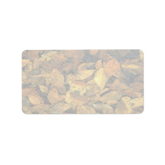 Abstract Beech and oak leaves in ice Address Label