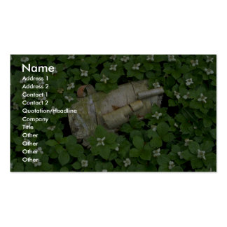 Abstract Birch bark and bunchberry flowers Business Cards
