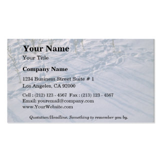 Abstract Bird tracks and feather imprint in the sn Business Card Template