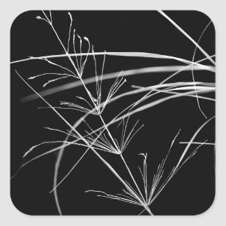 Abstract Black and White Nature Stickers