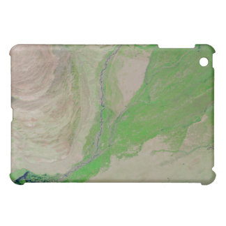 Abstract Blue Green iPad Case