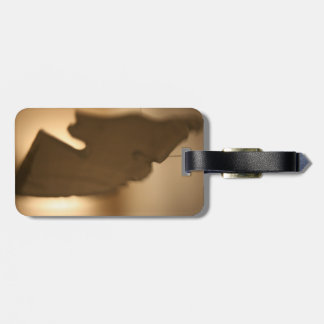 Abstract blur of brown tints luggage tags