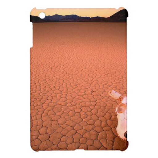 Abstract Bone Dry Death Valley Cover For The iPad Mini
