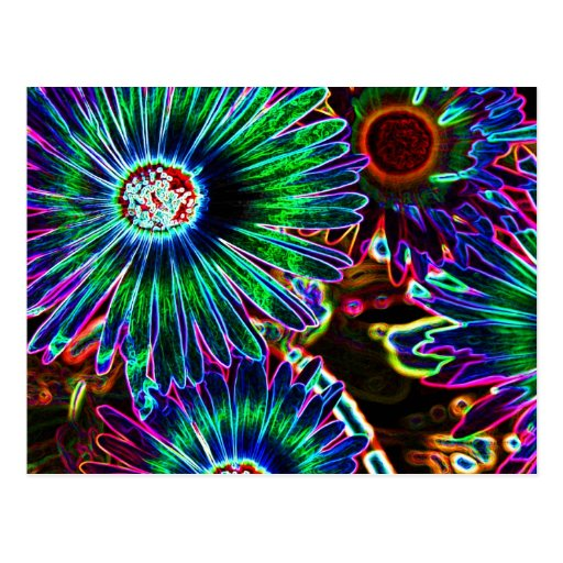 Abstract Cape Daisy postcard