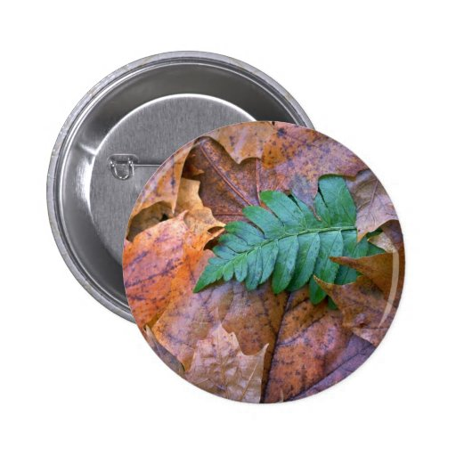 Abstract Christmas fern and autumn leaves Pins