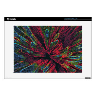 Abstract Color Explosion Laptop Decals