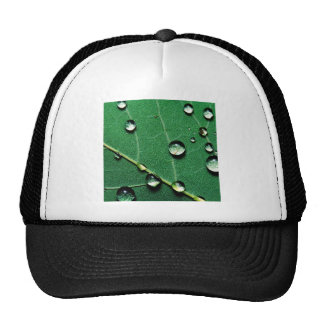 abstract colors raindrops on a fallen leaf jpg trucker hat