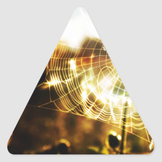 Abstract Cool Wheat Webs Of Fire Triangle Sticker