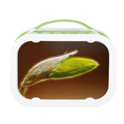 Abstract Daffodil Bud Lunch Boxes