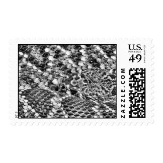 Abstract Danger, Eastern Diamondback Rattlesnake Postage Stamps