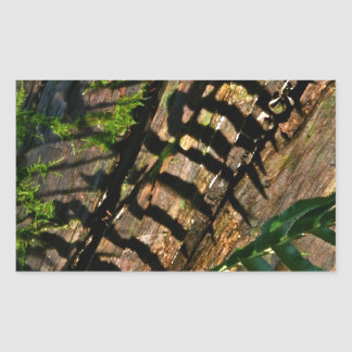 ABSTRACT DESIGN WITH FERNS AND SHADOWS RECTANGULAR STICKER