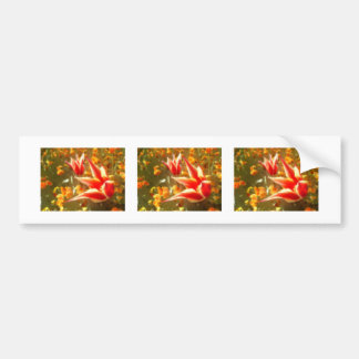 Abstract drawing of tulips bumper sticker