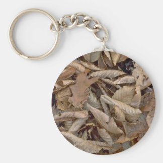 Abstract Dried beech, maple and oak leaves on the Keychain