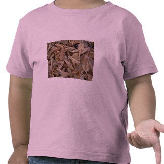 Abstract Dried beech, maple and oak leaves on the T Shirt