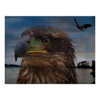 Abstract Eagle Canvas Poster