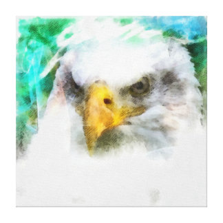 Abstract Eagle head painting Canvas Print