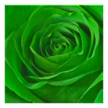 Abstract Emerald Green Rose Center Photograph Posters