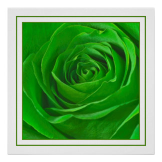 Abstract Emerald Green Rose Center Photograph Print