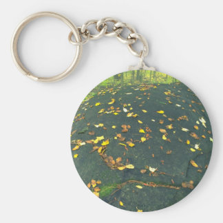 Abstract Erratic boulder and autumn leaves Keychain