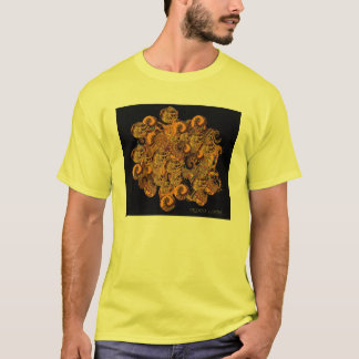Abstract Evolution. Paleozoic Geological Timescale T-Shirt