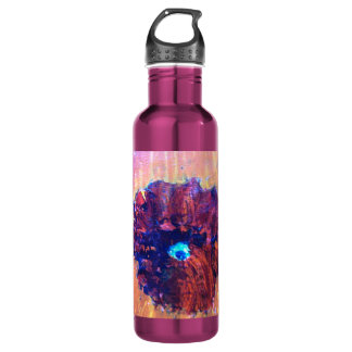 Abstract Eye 24oz Water Bottle