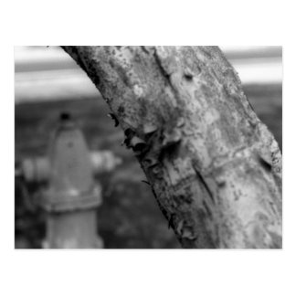 Abstract fire hydrant postcard