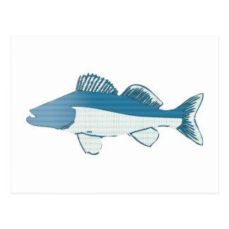 abstract fish- bass postcard
