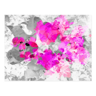 Abstract floral design - pink on white and gray postcard
