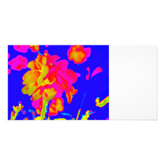 abstract flower magenta blue colorful floral image photo cards