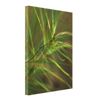 Abstract Foliage Wrapped Canvas Print