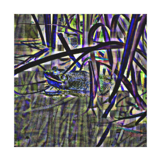 Abstract Froggy Stretched Canvas Print