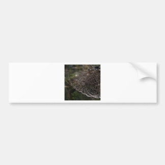 Abstract Garden Web Of Dew Bumper Sticker
