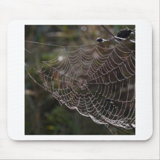 Abstract Garden Web Of Dew Mousepads