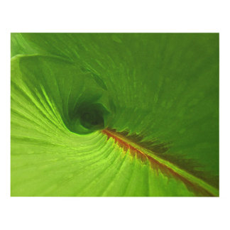 Abstract Ginger Leaf Spiral Wall Art Panel