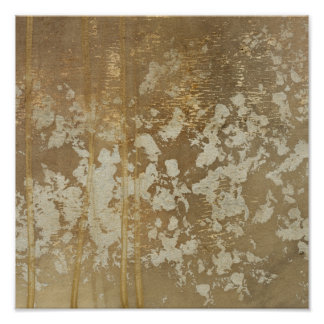 Abstract Gold Painting with Silver Speckles Poster