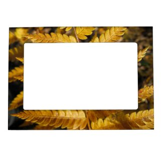 Abstract Golden Leaves Fall Photo Magnetic Frame