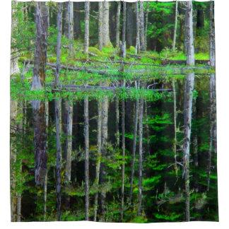 Curtains Ideas birch tree curtains : Birch Shower Curtains | Zazzle