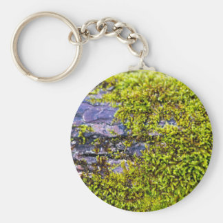 abstract green moss_on wood in winter keychain