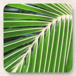 Abstract Green Palm Leaf Beverage Coasters