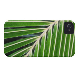 Abstract Green Palm Leaf Case-Mate iPhone 4 Case