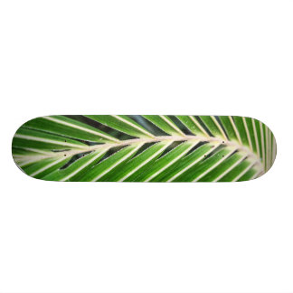 Abstract Green Palm Leaf Skate Board Deck